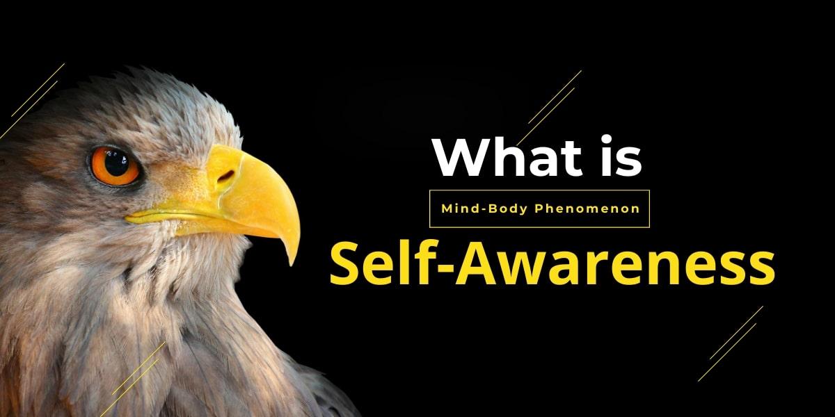 What is Self-Awareness? The Mind-Body Phenomenon